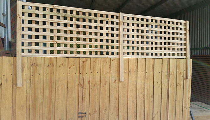2400 X 580mm Treated Pine 42mm Square Fence Extension